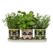 50 Orla-Kiely-3-Herb-Pots,--ú50,-www.cuckooland