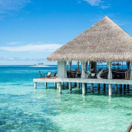 maldiv-1