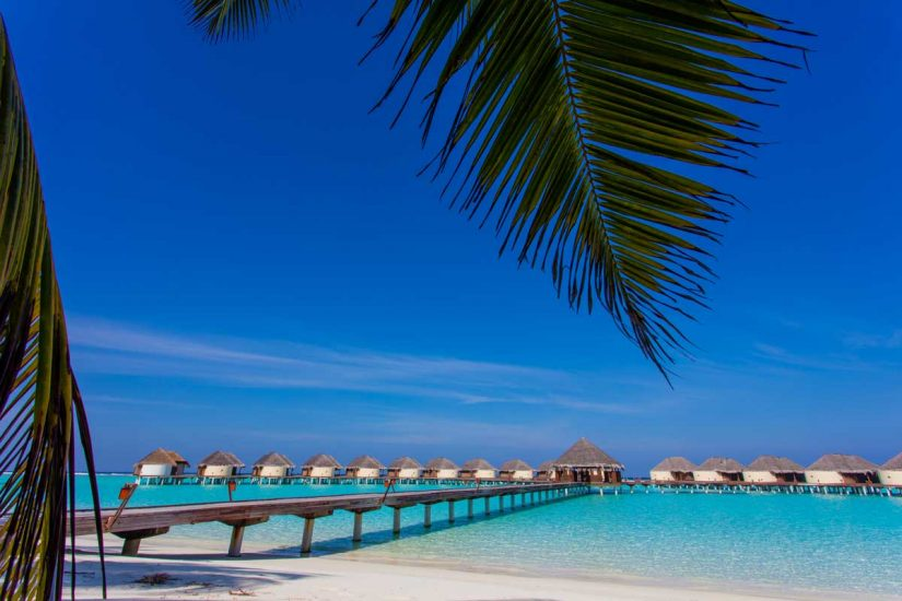 maldiv-m