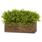 IMAGE-4---Faux-Topiary-Box-www.blossomandbuttercup.co